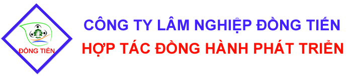 Dong Tien Lam Nghiep